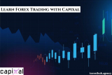Learn Forex Trading with Capixal
