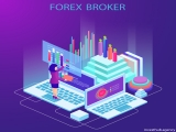 How do forex brokers and traders make money?